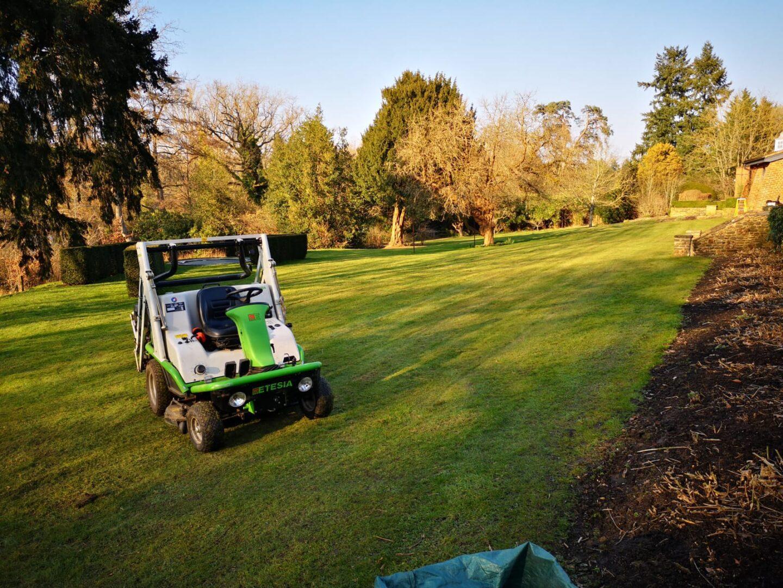 Long grass cutting