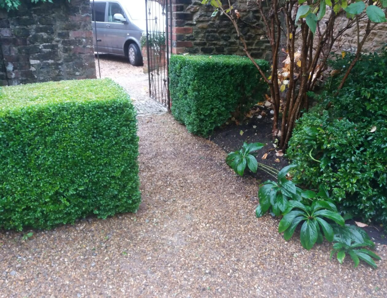 Hedge cutting Surrey