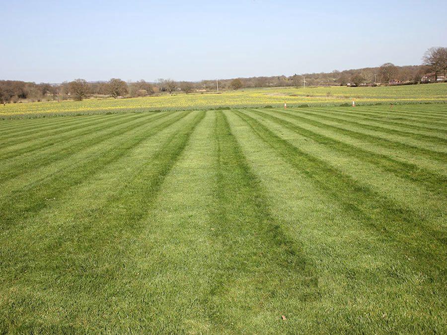 Large-grounds-mowing-Crawley-Horsham-Dorking-Redhill-Guildford-Epsom3