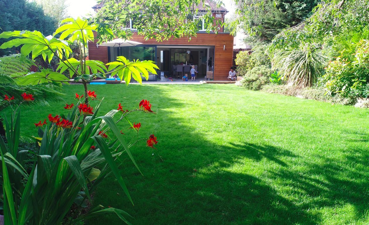 Lawn mowing Surrey