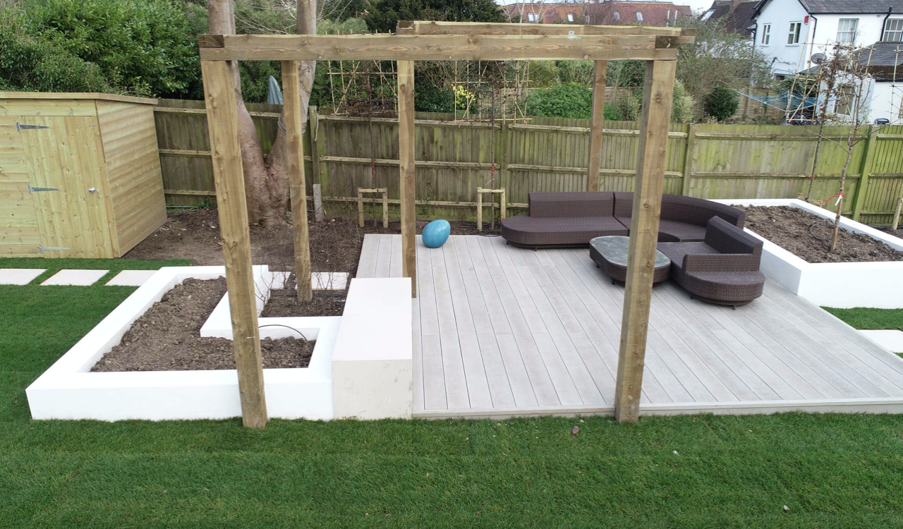 Pleached Trees Reigate